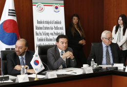 Corea des Sur-México, 53 años de relaciones